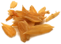 wildasparagusroot