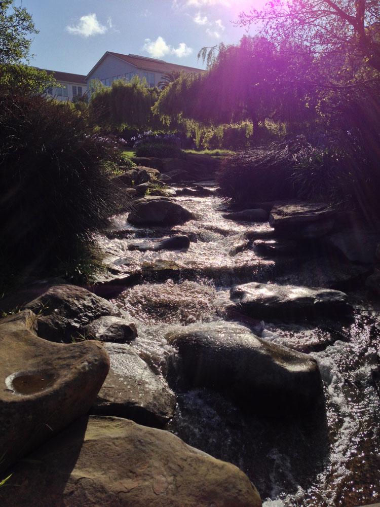 Water at Presidio