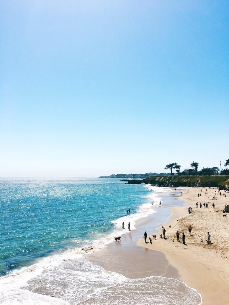 Santa Cruz Beaches / The Not As Touristy Guide to Santa Cruz