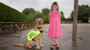 Savvy about Diabetes Alert Dogs