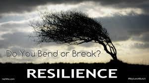 Savvy on Resilience