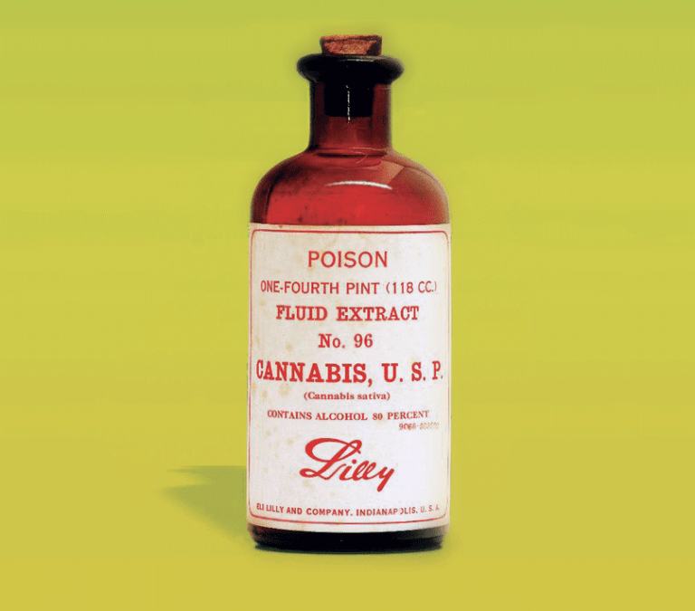 Savvy Updates 3/11/19: FDA Shake Up, Senseonics New CMO, Lilly and Cannabis, Gut Microbes
