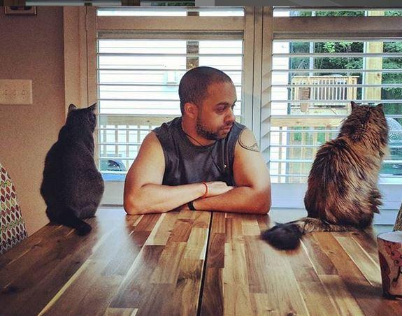 Savvy Pets, 12/13/19:  A House Full of Fur: Enzo, Erni and Miles Davis