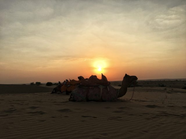 best things to do in Jaisalmer India