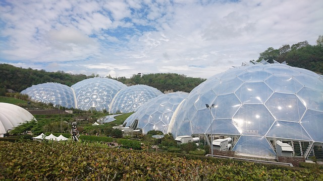 Eden Project one of the best thigns to do in cornwall