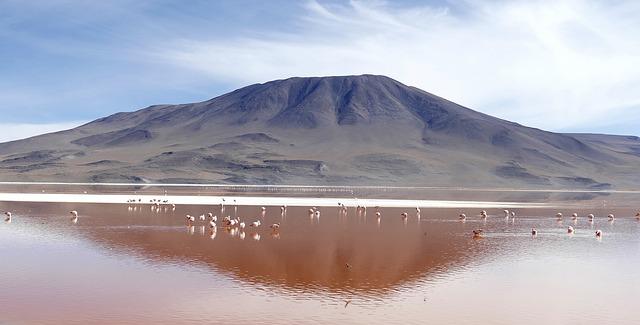 Laguna Colorada best places to visit in bolivia