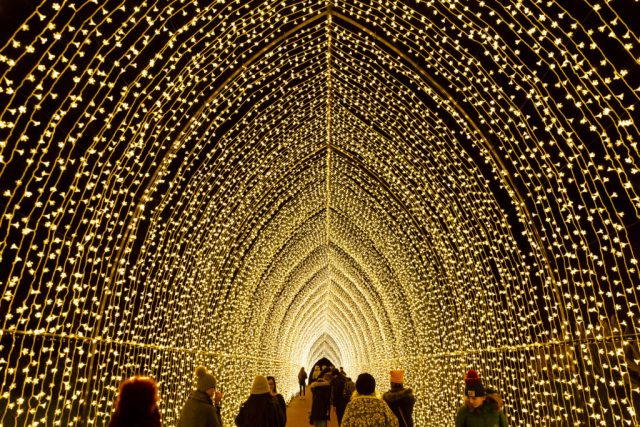 Sparkling tunnel of light at Lightscape Chicago Botanic Garden