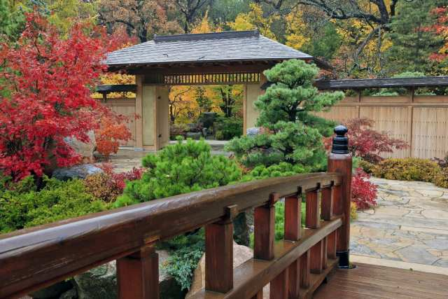 Anderson Japanese Gardens in Rockford Illinois is one of the best day trips from Chicago
