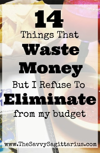 "The biggest financial advice I have seen is what items that you should never pay for once you start your debt free journey. Maybe I just don't fit in, but I don't see eye to eye on all of the items that are a ""waste"" of money. I believe that if it brings ease or joy to your life, why eliminate it! Check out my list of 14 things that I waste my money on!"