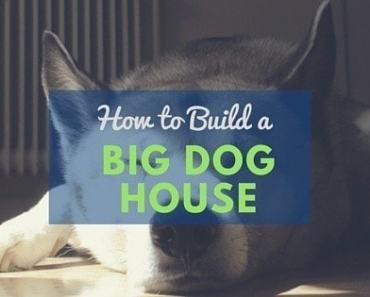 Dog house plans 2 large dogs