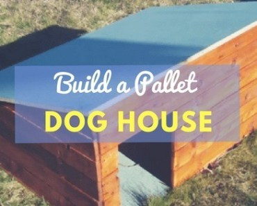 How to build a dog house from pallets