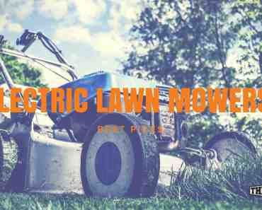 Best electric lawn mower for the money
