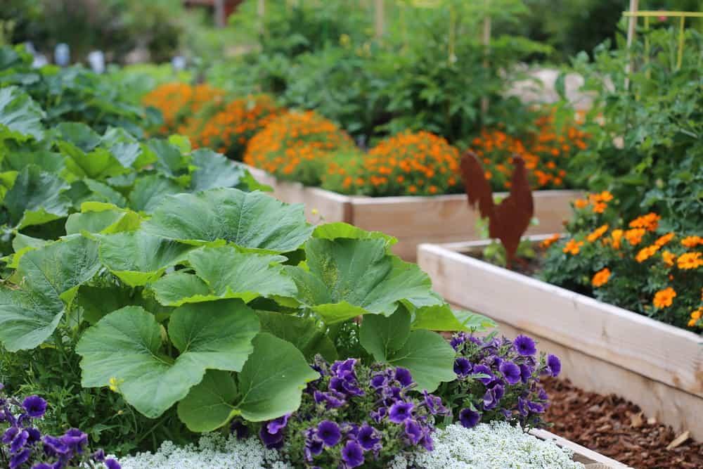 light wood flower gardens