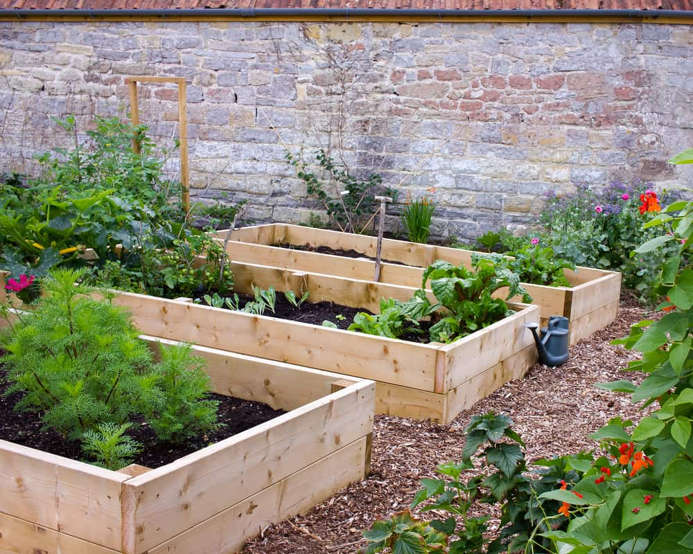 unstained trio gardens