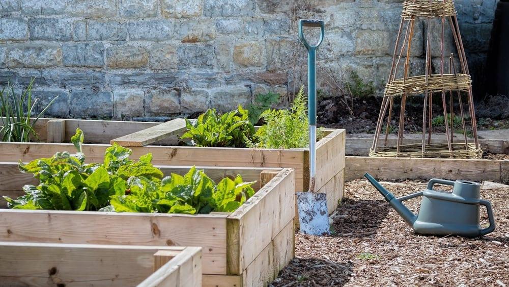 three gardens and shovel