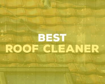 Best Roof Cleaner