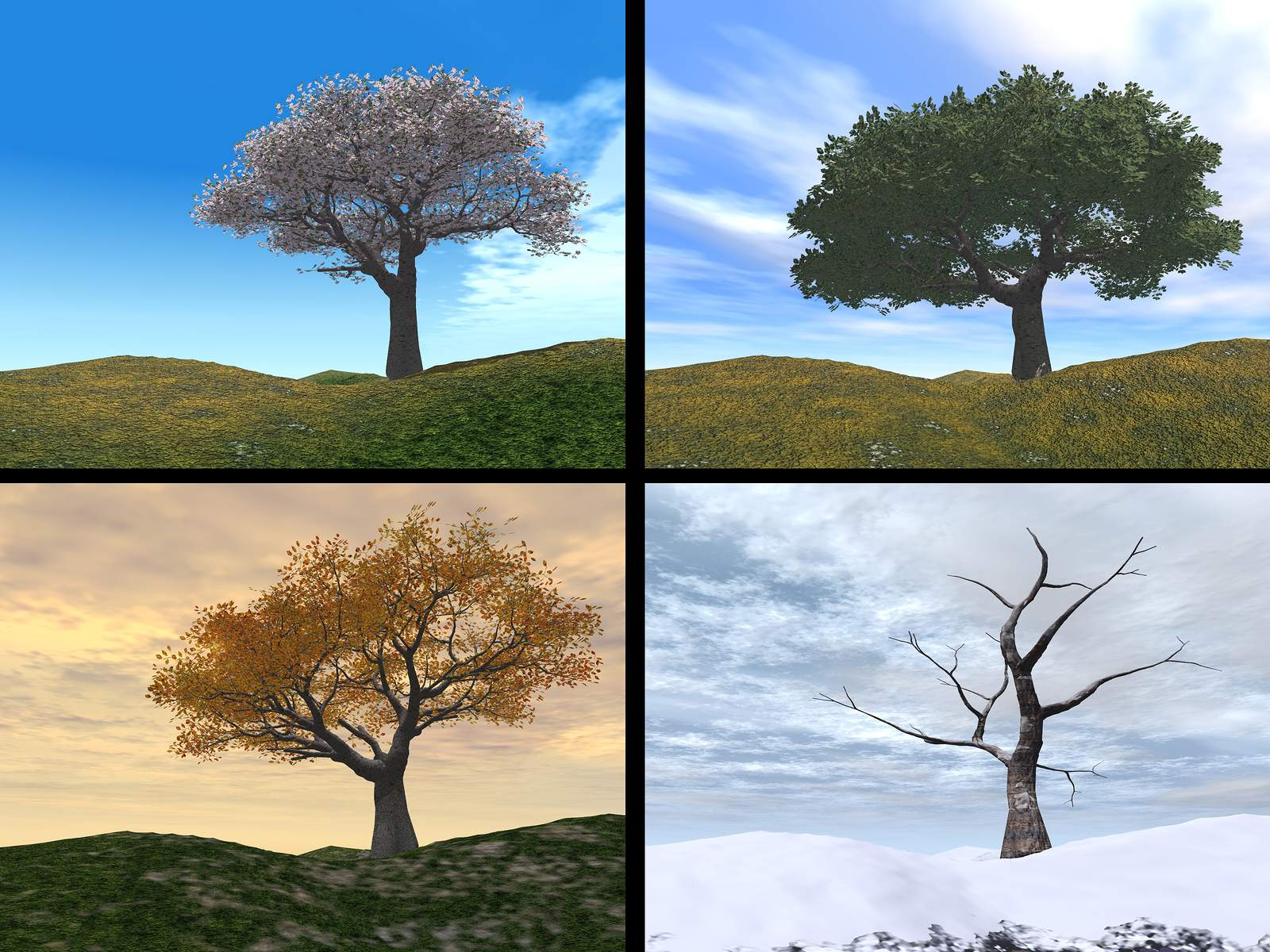 Seasons Explained