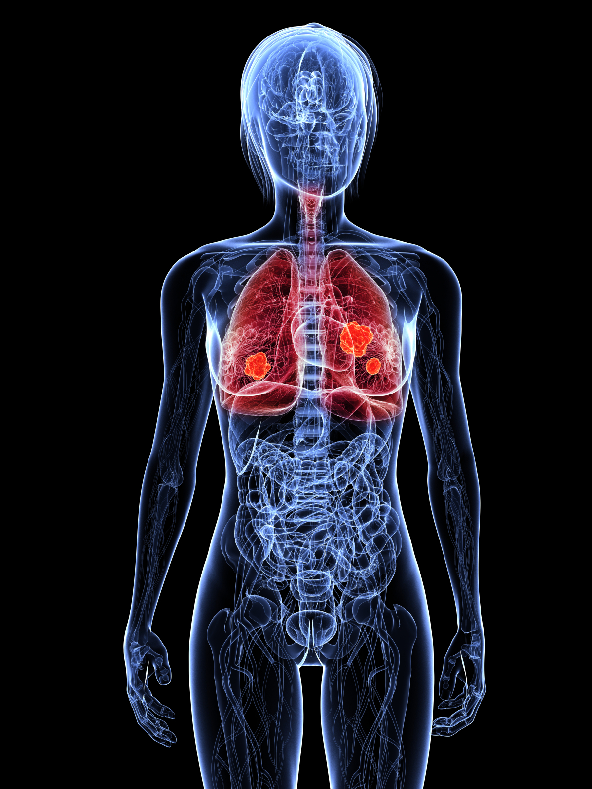 hight resolution of human respiratory system