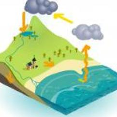 Labelled Diagram Of Water Cycle Eaton 13 Speed Air The Explained For Children What Is