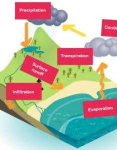 What is the water cycle also explained for children rh theschoolrun