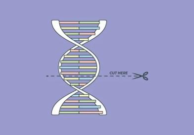 CRISPR-CAS9: Fantascienza?