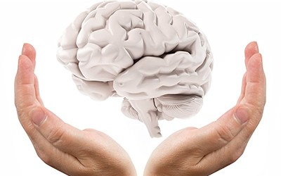 Touching and Being Touched: The Hand as a Brain