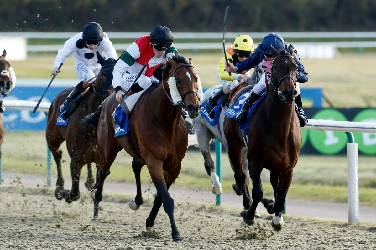 Horse Results Today Live Racing