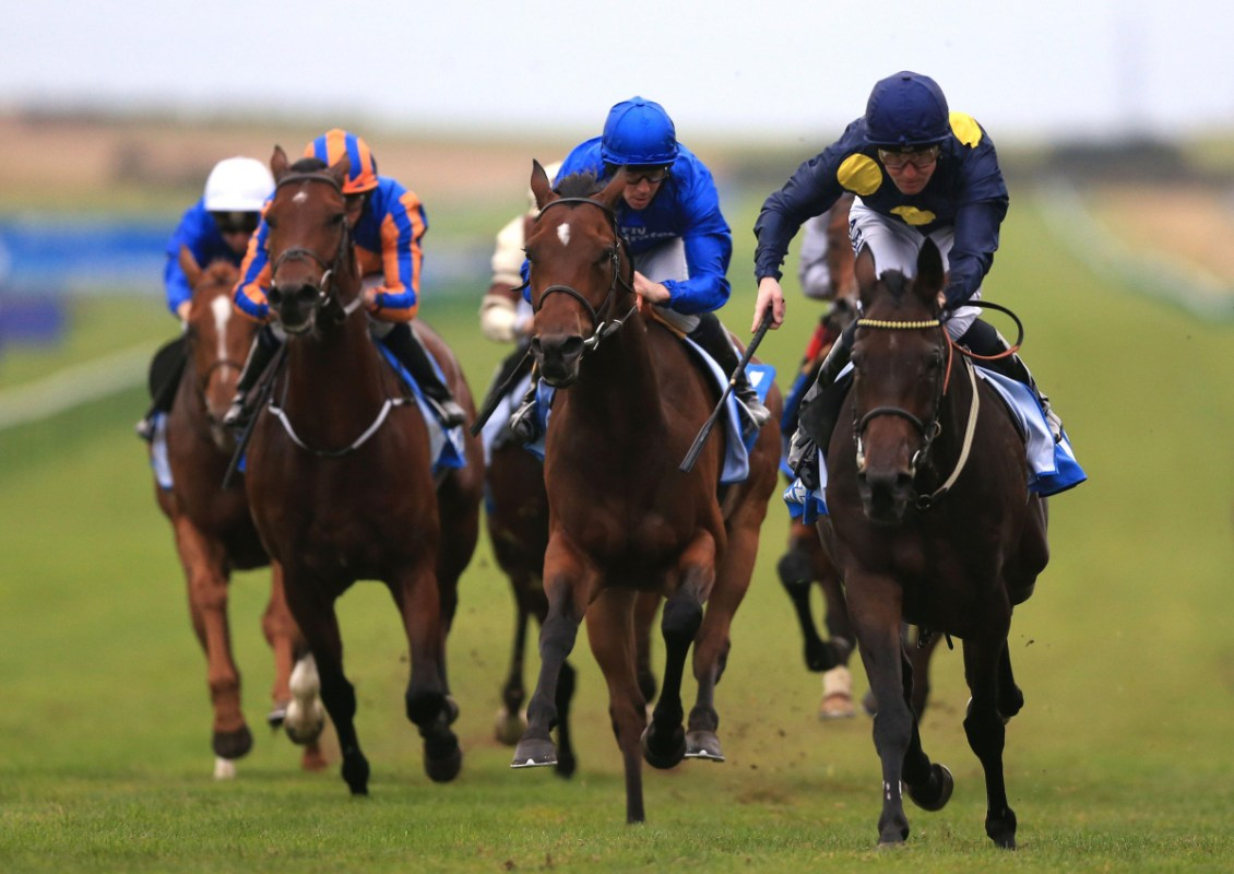 Templegate Racing Tips Sedgefield Exeter Sandown And - Year