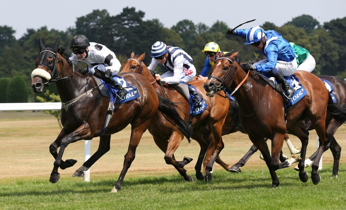 Horse Racing Tips Uk - Year of Clean Water