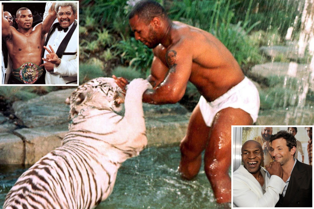 Flipboard Mike Tyson Says He S Looking Forward To Death