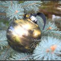 Elegant Black and Gold Christmas Ornament DIY. Madge Gillen