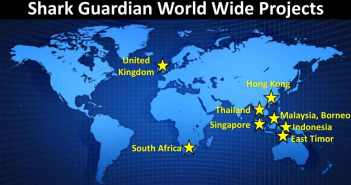 Shark Guardian Projects at The Scuba News