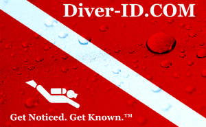 Diver ID Logo