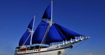 Philippine-Siren-High-ResRS