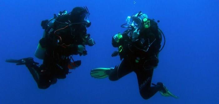 indigo-ocean-reef-2