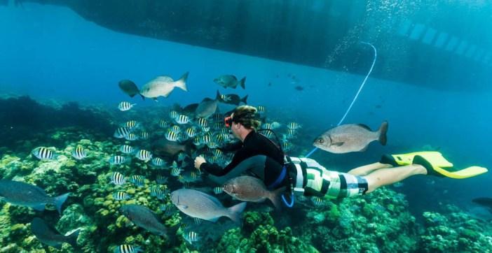 earth-day-cayman-islands-17-03-16