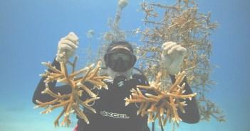 coral-restoration-foundation-coralpalooza-1