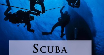 Scuba Professional