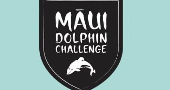 maui-dolphin-challenge