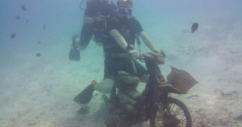 Eco Divers Phuket