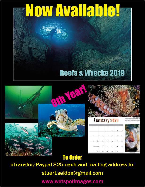 wreck-calendar