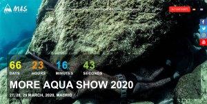 More Aqua Show 2020