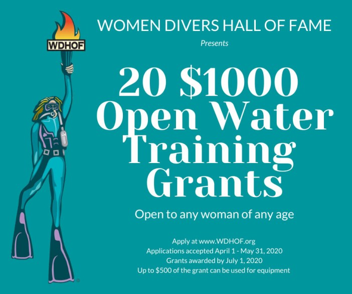 Openwater Training Grants