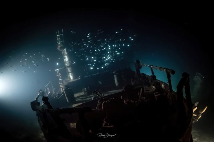 Night Diving - Adan Banga
