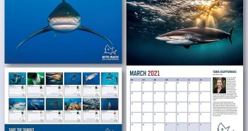 Help Bite-Back Shark and Marine Conservation By Buying Their Excellent 2021 Shark Calendar