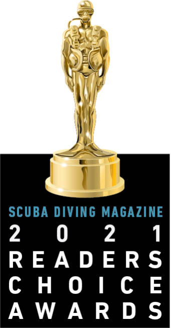 Pro Dive International Award