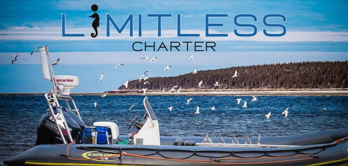 Introducing Limitless Dive Charter