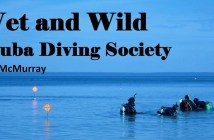 Wet and Wild Diving