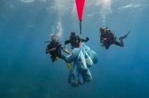 Deep Blue Dive Center Clean Up