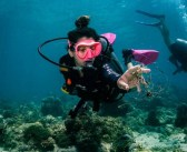 PADI Announces Fourth Annual AWARE Week to Save the Ocean
